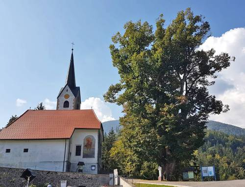 Rokova lepa nedelja na Selah pri Slovenj Gradcu