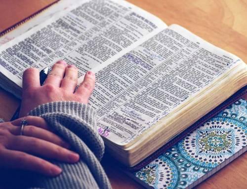 Poveži se z Božjo besedo